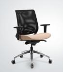 Reflex Bel Destekli, Premium Alm. Ayak Alm. Ayarlı Kolçak, Revo Mek. Oturak Hareketli Çalışma Koltuğu